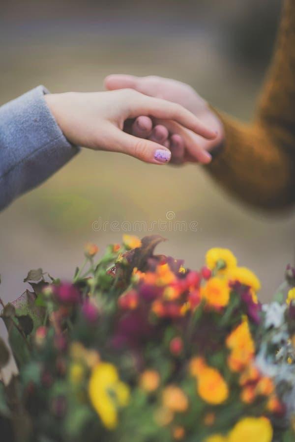 Il ritratto del primo piano delle mani delle coppie, si ama in c calda morbida fotografia stock libera da diritti