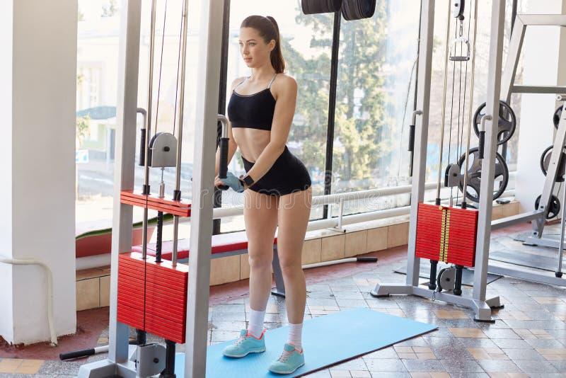Il ritratto della giovane signora europea atletica che fa gli esercizi fisici, peso di sollevamento, rinforza il suo corpo con ai fotografia stock libera da diritti