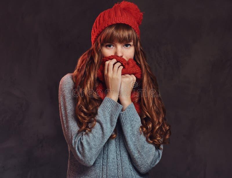 Il ritratto di bella ragazza della testarossa che porta un maglione caldo, copre il suo fronte di sciarpa fotografia stock