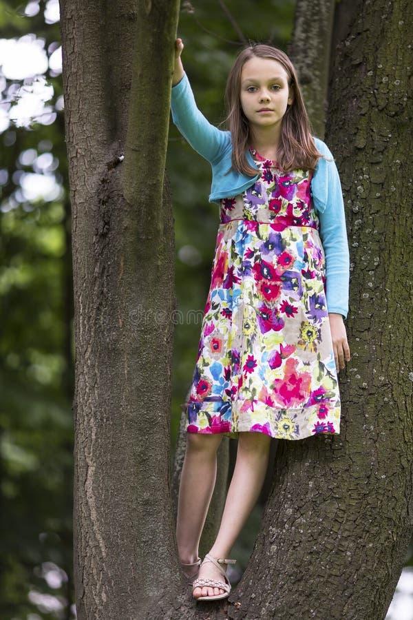 Il ritratto nella piena crescita della ragazza sta sui rami di un albero immagini stock libere da diritti