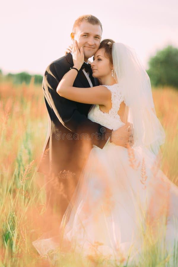 Il ritratto snesitive delle persone appena sposate felici che abbracciano nel giacimento di grano fotografia stock libera da diritti
