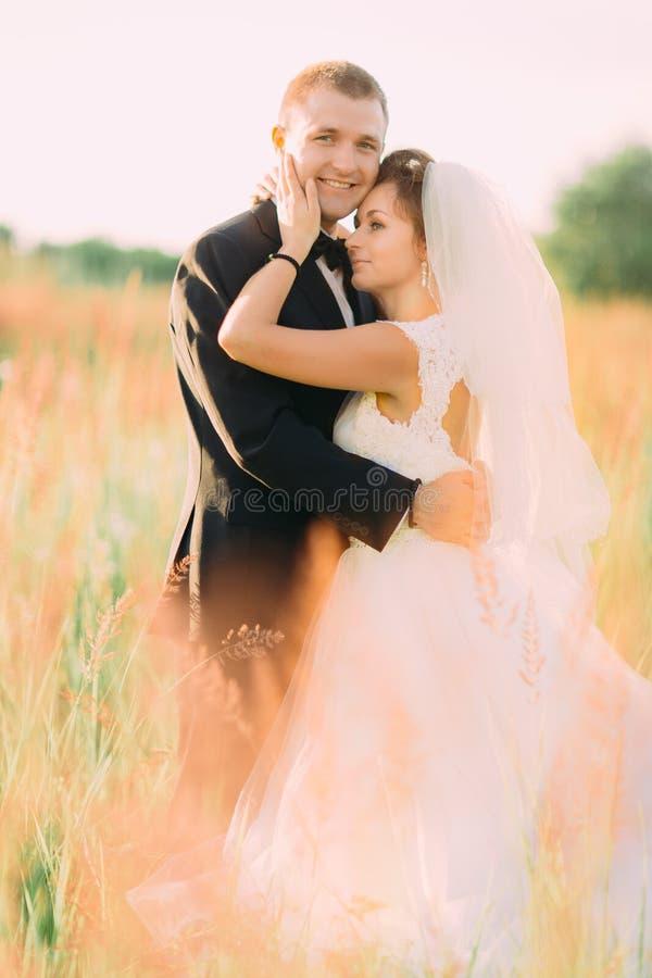 Il ritratto verticale delle persone appena sposate abbraccianti sorridenti fra i wheatears immagini stock
