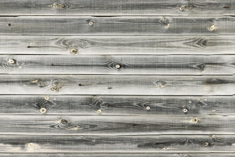 Il rivestimento di legno si imbarca sulla parete Struttura di legno bianca e grigia vecchi pannelli del fondo, modello senza cuci immagine stock libera da diritti