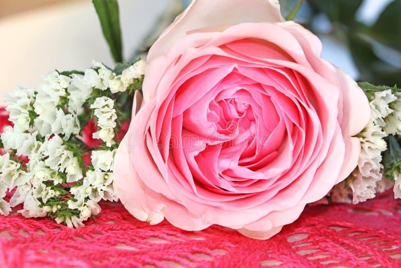 Il rosa è aumentato su un tovagliolo tricottato fotografie stock