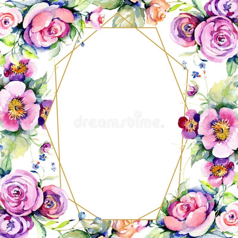 Il rosa ? aumentato fiori botanici loral del mazzo Insieme dell'illustrazione del fondo dell'acquerello Quadrato dell'ornamento d illustrazione di stock