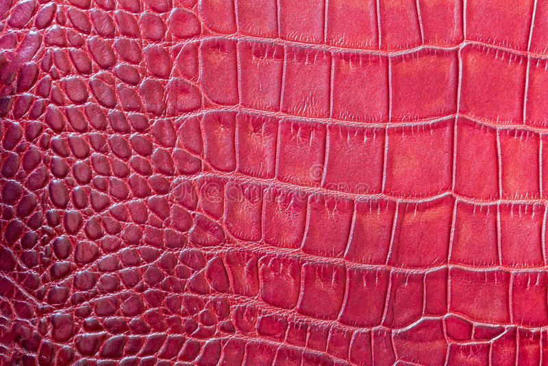 Il rosso riporta in scala il macro fondo esotico, impresso sotto la pelle di un rettile, coccodrillo Primo piano del cuoio genuin immagine stock