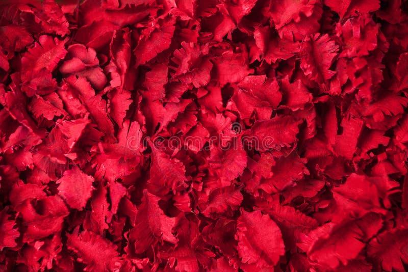 Il rosso secco fiorisce il fondo dei potpourri di aromaterapia fotografie stock