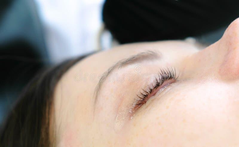 Il ` s della donna del primo piano frusta dopo la procedura della laminazione della sferza Trattamento di bellezza Occhio del pri fotografia stock