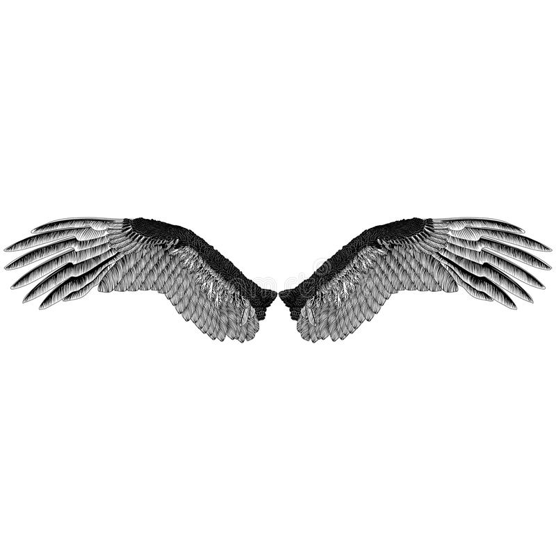 Il ` s di Eagle traversa il modello volando monocromatico immagine stock libera da diritti