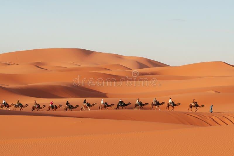 Il Sahara fotografie stock
