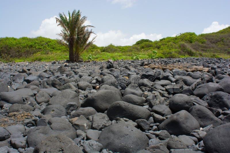 Il Senegal, isola de la Madeleine fotografia stock