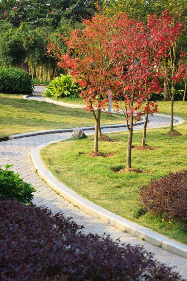 Il sentiero per pedoni del mattone in un giardino tranquillo. immagine stock libera da diritti