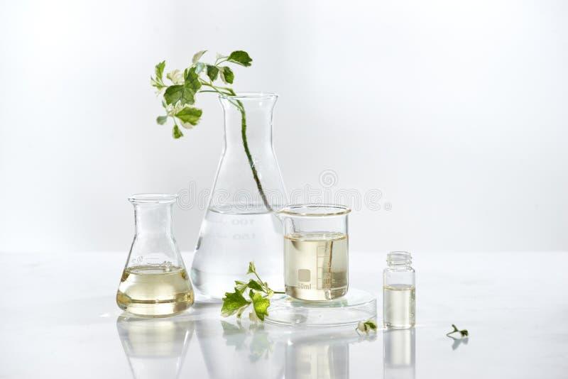 Il siero cosmetico naturale dello skincare che imballa con la foglia, casa ha fatto l'ingrediente della vitamina di bellezza e de immagine stock