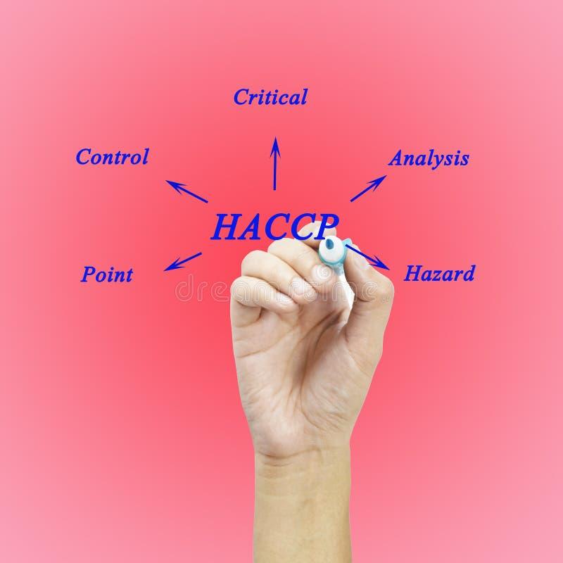 Il significato del concetto di HACCP (analisi dei rischi dei punti di controllo critici) un principio fotografie stock libere da diritti