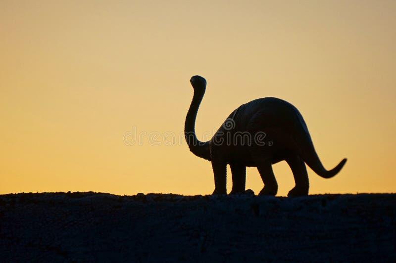 Il siluet del dinosaurus immagine stock libera da diritti