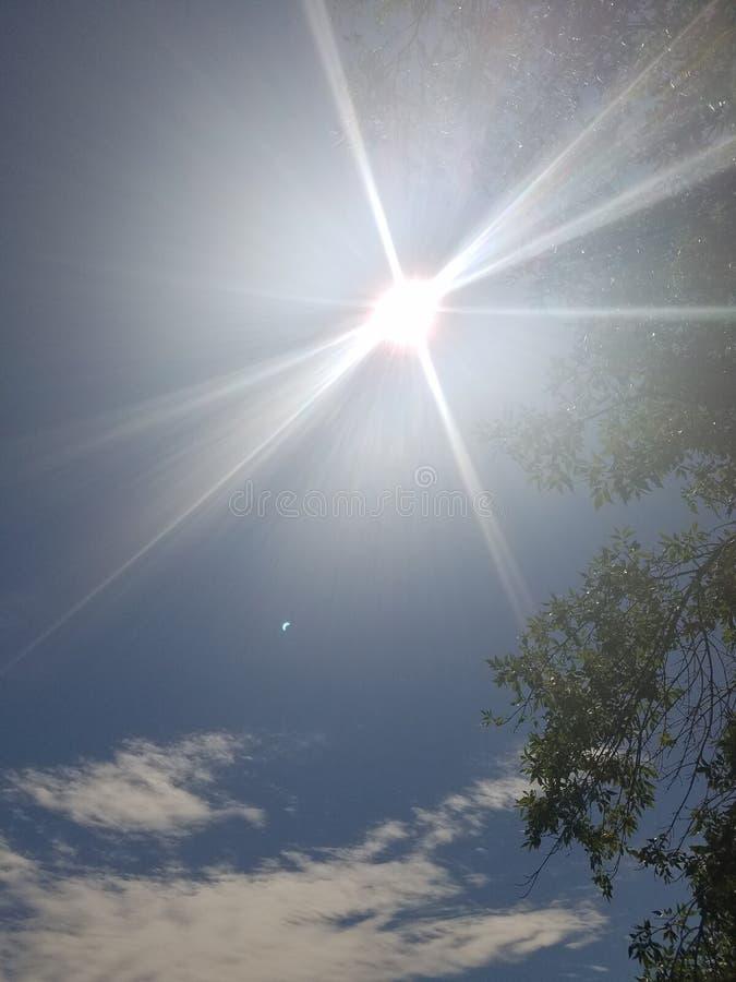 Il sole d'abbaglio fotografia stock libera da diritti