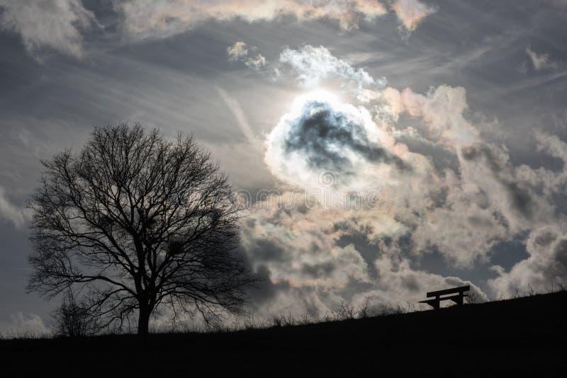 Il sole si nasconde dietro una nuvola di un banco e di un albero fotografia stock libera da diritti