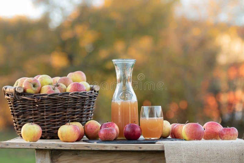 Il succo di mele fresco dalle mele nella caduta dopo il raccolto, ? servito su una tavola immagini stock libere da diritti