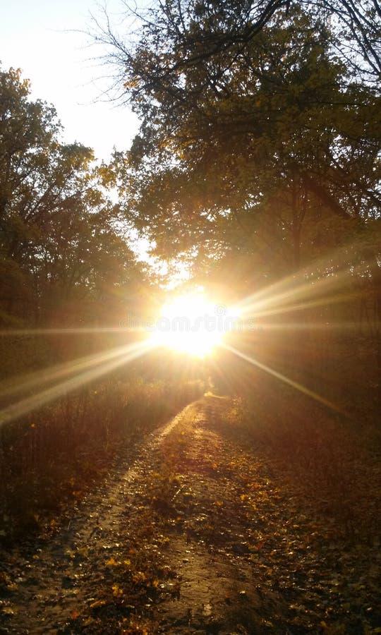 Il Sun è brillante immagine stock
