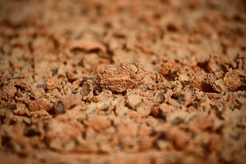 Il suolo colorato rossastro duro secco ha isolato - la foto di riserva fotografie stock