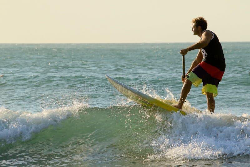 Il SUP sta su e rema praticare il surfing immagini stock libere da diritti