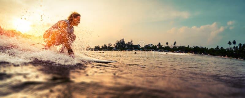 Il surfista guida l'onda fotografia stock