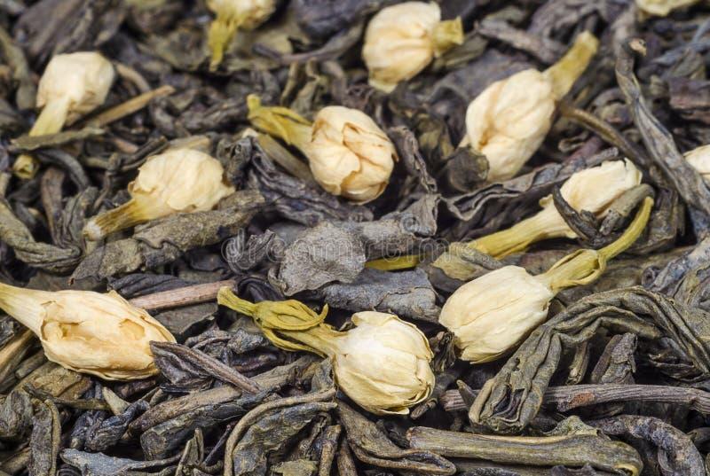 Il tè verde con il gelsomino secco fiorisce il primo piano fotografie stock