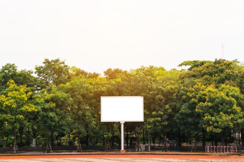 Il tabellone per le affissioni bianco in bianco la parte posteriore è pieno degli alberi immagine stock libera da diritti