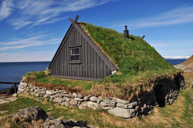 Il tappeto erboso tradizionale ha coperto la casa islanda for Tappeto erboso a rotoli prezzi