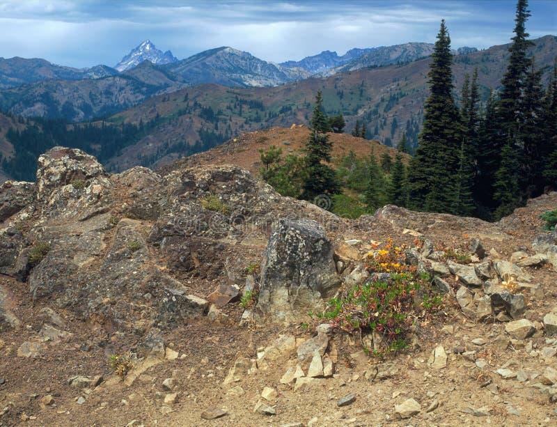 Il Teanaway Ridge Trail, regione alpina dei laghi, gamma della cascata, Washington fotografia stock