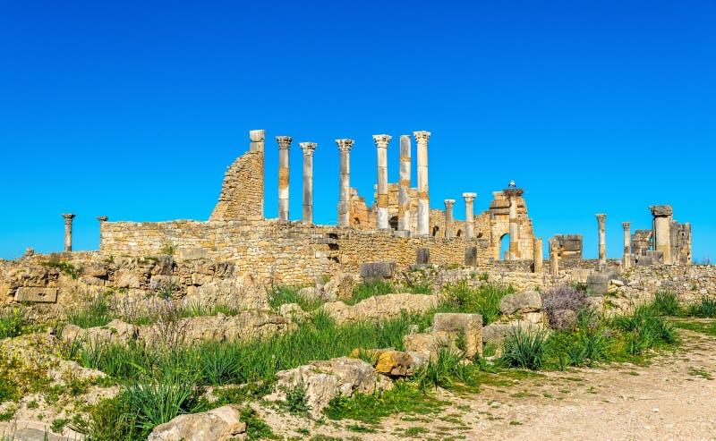 Il tempio di Capitoline e Roman Basilica in Volubilis, Marocco immagine stock libera da diritti