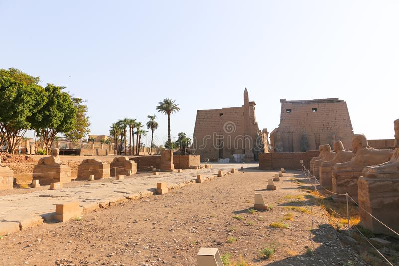 Il tempio di Luxor - l'Egitto fotografia stock