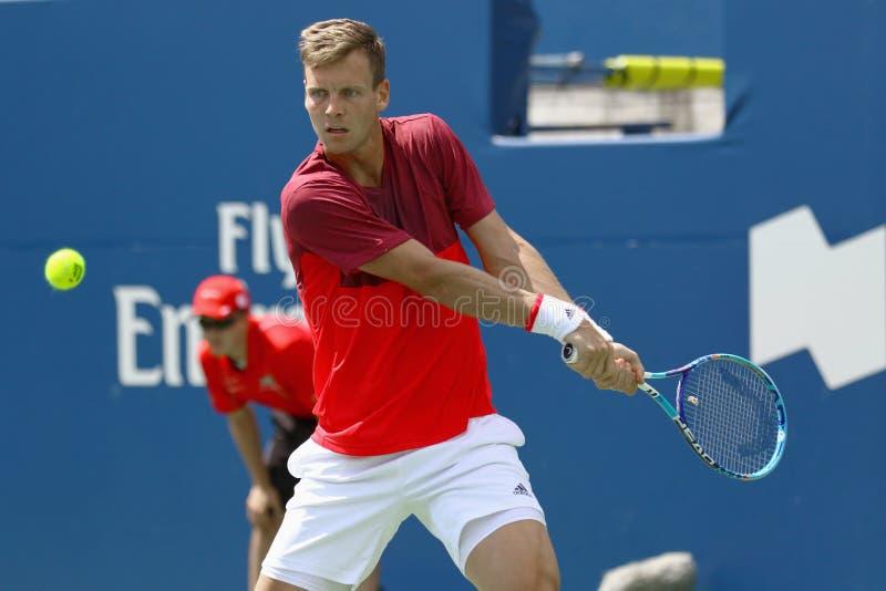 Il tennis professionale degli uomini immagine stock