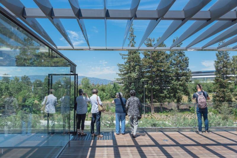 Il terrazzo del tetto caratterizza una vista unica del parco di Apple e del suo ro fotografie stock libere da diritti