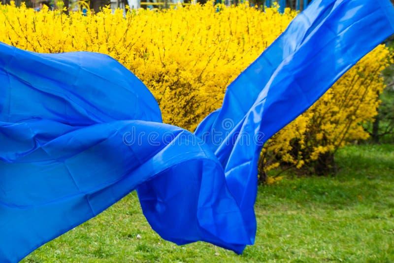 Il tessuto blu si sviluppa nel vento immagine stock libera da diritti