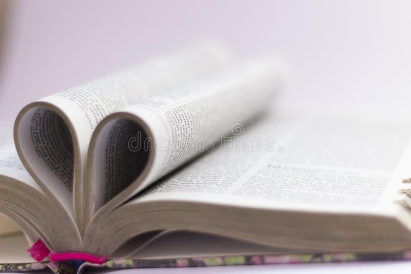 Il testo del libro proviene dalla bibbia fotografia stock libera da diritti