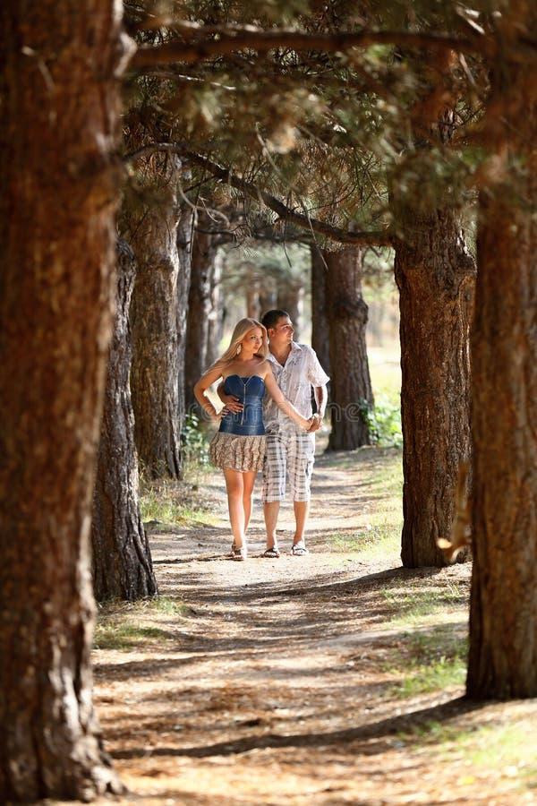 Il tipo innamorato e la ragazza camminano in legno immagine stock