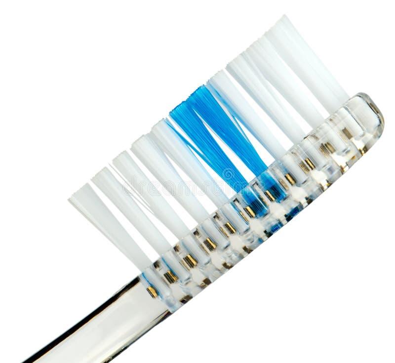 Il Toothbrush solated su bianco fotografia stock libera da diritti