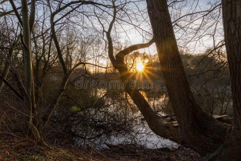 Il tramonto in attracca fotografia stock libera da diritti