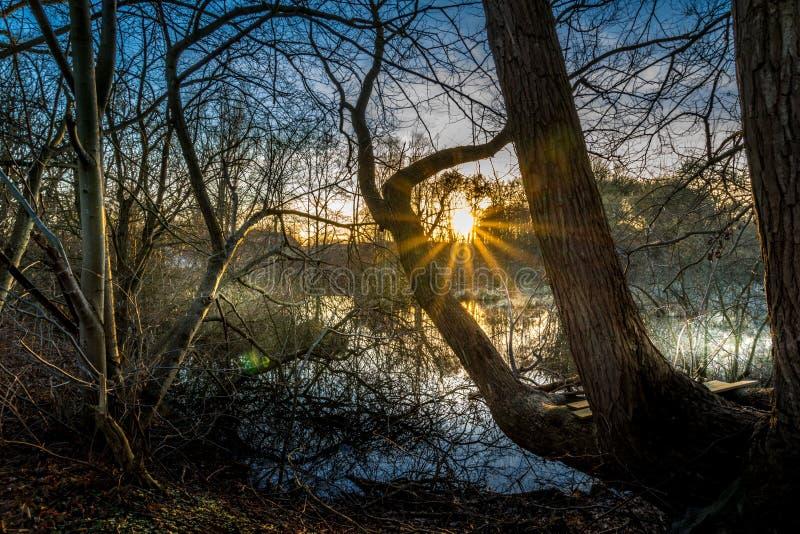 Il tramonto in attracca immagine stock libera da diritti
