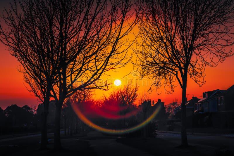 Il tramonto e un chiarore attraente della lente lungo un albero hanno allineato il viale residenziale nell'inverno in cui la silu fotografie stock libere da diritti