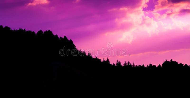 Il tramonto si appanna la foto con la siluetta dell'abetaia alla collina fotografia stock