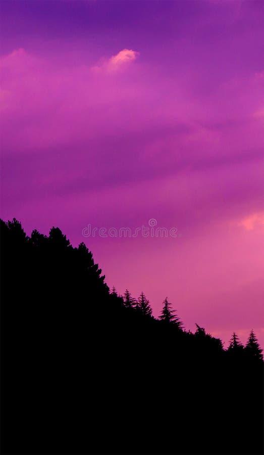 Il tramonto si appanna la foto con la siluetta dell'abetaia alla collina fotografie stock