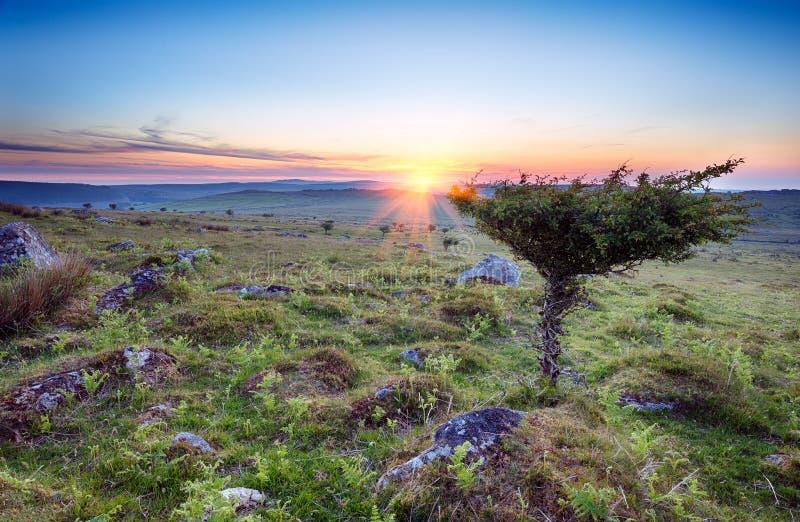 Il tramonto su Bodmin attracca immagini stock