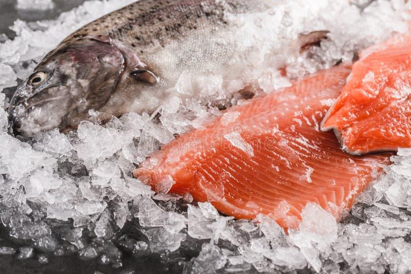 Il trancio di pesce ed il pesce intero crudi freschi della trota con le spezie sopra ghiacciano il fondo di pietra scuro Disposiz immagine stock libera da diritti