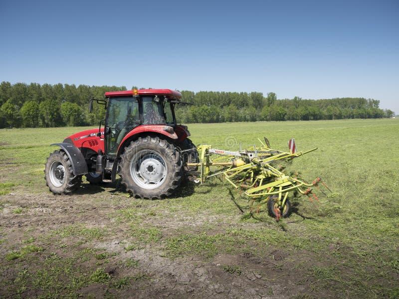 Il trattore e l'erba Turner funzionano in prato olandese nella provincia dell'Olanda Meridionale nei Paesi Bassi immagini stock libere da diritti