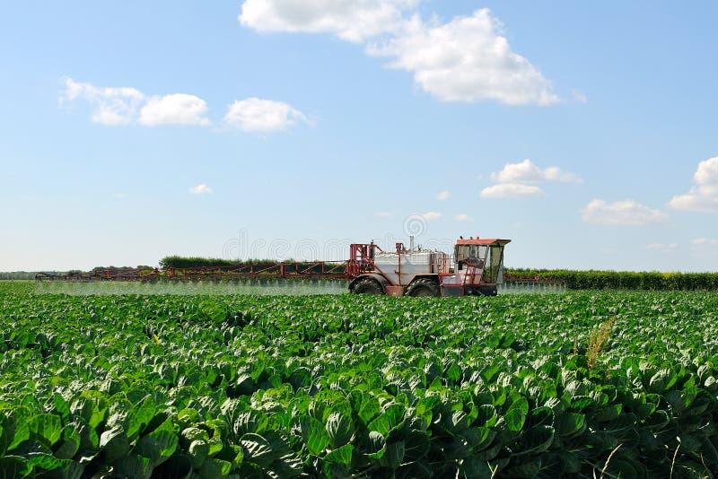 Il trattore fertilizza i raccolti fotografia stock