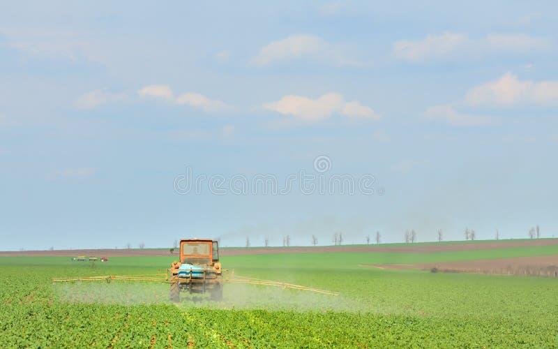 Il trattore fertilizza i raccolti nel campo immagini stock