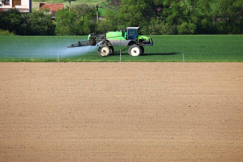 Il trattore fertilizza il giacimento di grano verde fotografia stock