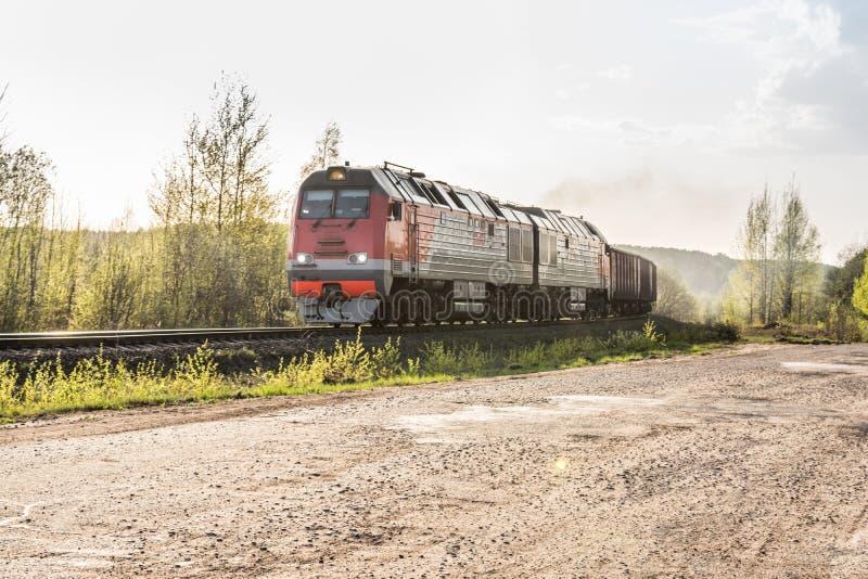 Il treno merci ha trasportato in locomotive diesel che passano la foresta fotografie stock libere da diritti